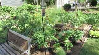 Bird Feeders & Bird Baths To Protect Your Vegetable Garden: Caterpillar Killers! - Trg 2014