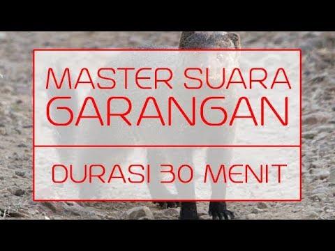SUARA MASTER GARANGAN   DURASI 30 MENIT