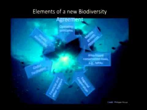 Marine Conservation Symposium | Keynote Address with Kristina Gjerde