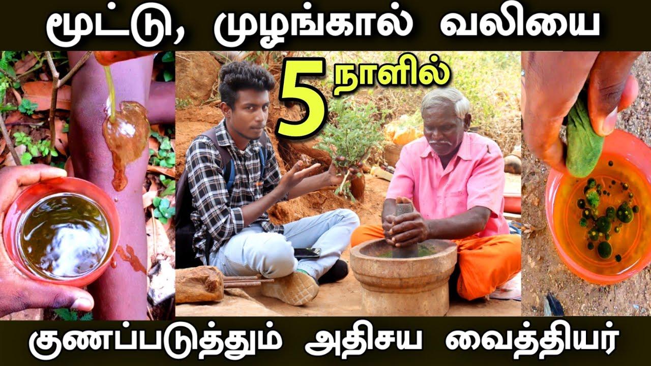 மலையில் ஒரு அதிசய வைத்தியர் | Best medicine for arthritis pain in Tamil | Edison Vlogs Tamil