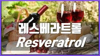 레스베라트롤 Resveratrol 7가지 효능 부작용,…