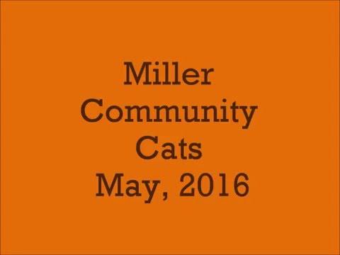 Miller CC May, 2016