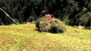 The Dime Traveler- Milking It In Switzerland