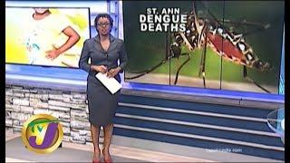 TVJ News: St. Ann Dengue Deaths - October 14 2019