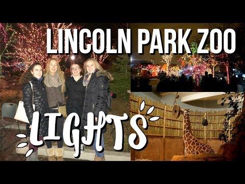Lincoln Park Zoo Christmas Lights!! | VLOGMAS DAY 17