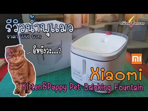 รีวิวน้ำพุแมว Xiaomi Kitten&Puppy Pet Drinking Fountain