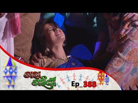 Tara Tarini | Full Ep 388 | 31st Jan 2019 | Odia Serial - TarangTV thumbnail
