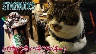 リキちゃんと一緒に夜cafe☆スタバで『ハロウィンウィッチフラペチーノ』を先取り☆猫とおでかけ☆【リキちゃんねる 猫動画】Cat video キジトラ猫との暮らし