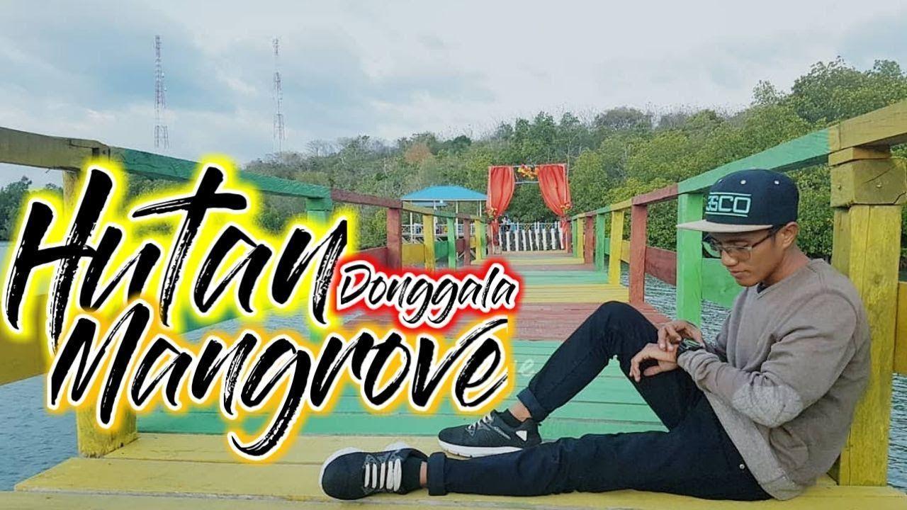Ruang Terbuka Hijau Kota Donggala Wisata Hutan Mangrove Donggala Sulawesi Tengah Youtube