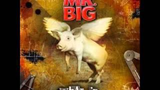 Mr. Big - Nobody Left To Blame (HQ)