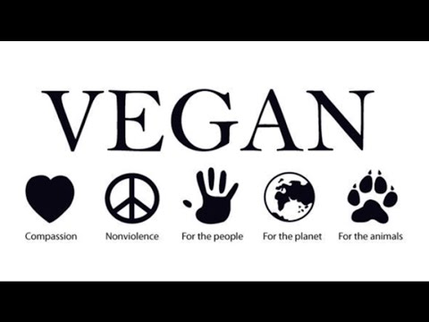 Why YOU Should Go Vegan: The Facts