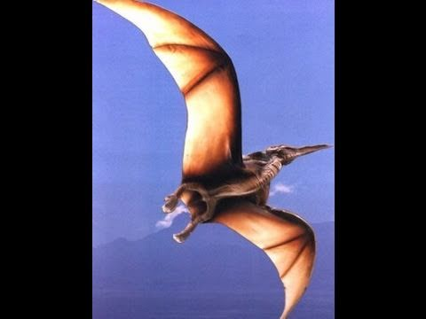 Origami Dinosaurs for Beginners  Dover Publications