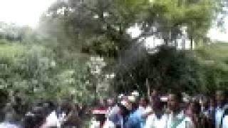 Ireecha Oromoo hara harsadi