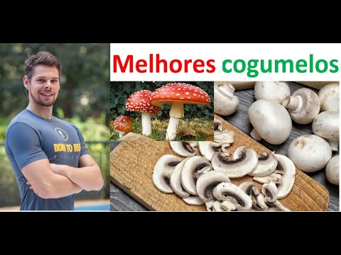 o-poder-dos-cogumelos-medicinais-e-incrível-terapia-para-gordura-localizada-e-antienvelhecimento