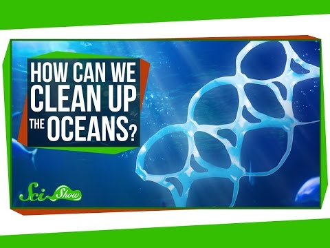 How Can We Clean Up the Oceans?