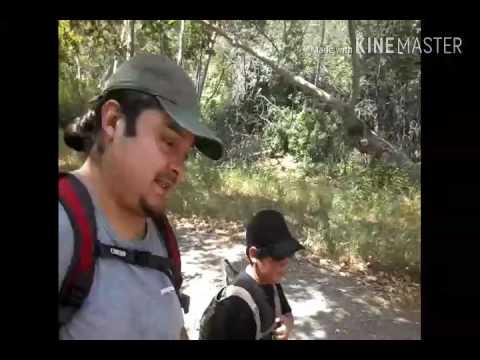 Golden spinner found while in a adventure!||Santa Monica mountain