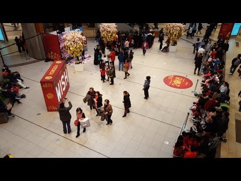 Toronto Scarborough Town Centre Chinese New Years Performanc