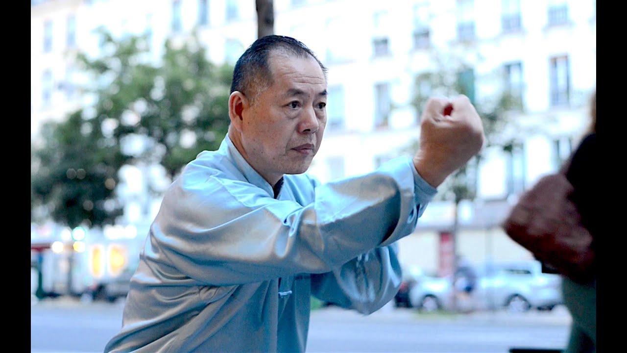 Download Snake style - Wang Li Kun, the real Tai Chi master (9ème dan)