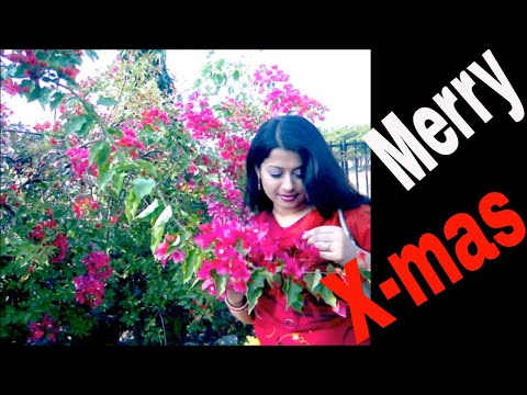 merry-christmas-and-the-gifts-বড়দিনের-উপহার-subtitle-cc