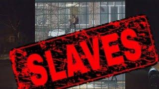 Воспитывают ли детей рабами в американских школах?