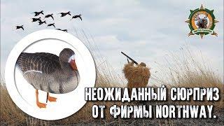 Посылка от фирмы Northway/Охота на гуся/Hunting goose
