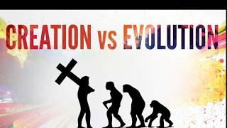 Does the Evidence Support Creationism? (Part 1 of 6: Taxonomy)