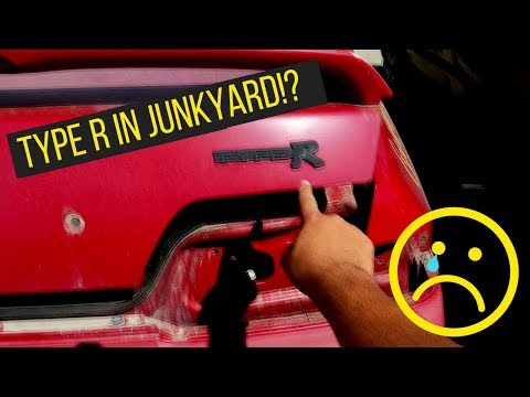 Import Junkyard Finds!! (How To Get Cheap Car Parts)