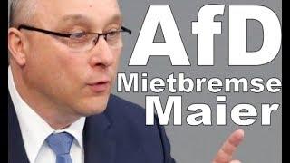 AFD Maier : Der Sozialismus ist Tot - töter kann er nicht sein! - HD -