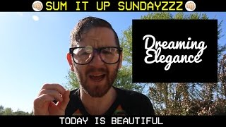 Dreaming Elegance Scam | Passed 600 Instagram Followers | Sum it up Sunday ✊