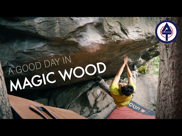 The Beauty of Magic Wood - Marco Müller Crushing 3 Hard Boulders in One Day