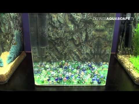 Methods For Breeding Aquarium Fish - Aquatics Live 2012, Part 9