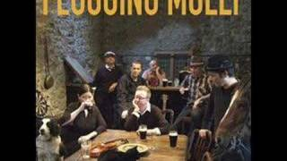 Watch Flogging Molly Man With No Country video