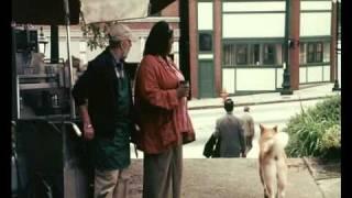 Trailer HACHIKO - AMIGO PARA SEMPRE PT