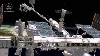 Dextre changes a pump on the International Space Station