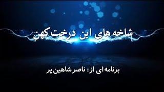 شاخه های این درخت کهن   دوشنبه ۷ خرداد
