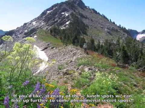 Wyoming Horseback Rides in the Tetons with Dry Ridge Outfitters