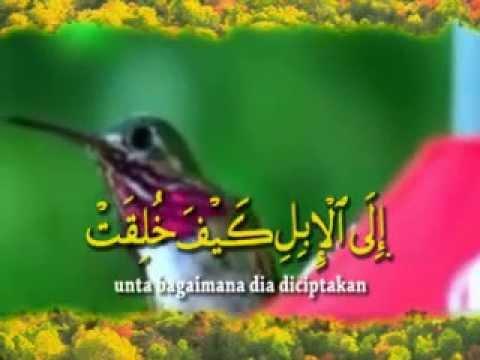 Q.S. Al-Ghasyiyah (88) ~ Ahmad Saud