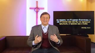 Библия за год 365 / 14 февраля / день 45