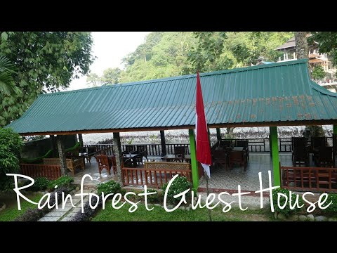 Rain Forest Guest House Bukit Lawang - At the doorstep of the Jungle, Sumatra