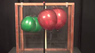 Balloon Buoyancy - What makes balloons float?