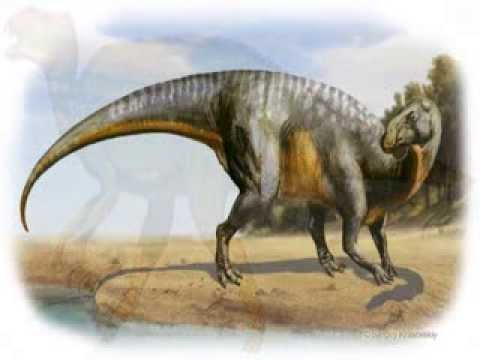 "Mundo Saurio 6 ""Hadrosaurus"""