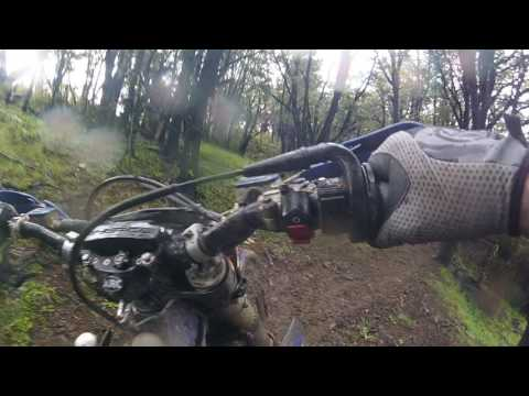 Sherco 450,Nutbuster Loop 2,Trig Road,View Hill Oxford,New Zealand,12-11- 2016