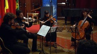 Concert, NOX String Quartet - 2016-10