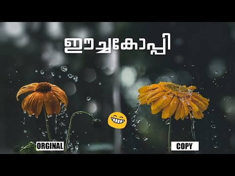 ഈച്ചകോപ്പി-||-malayalam-photography-tutorial-||-episode-1