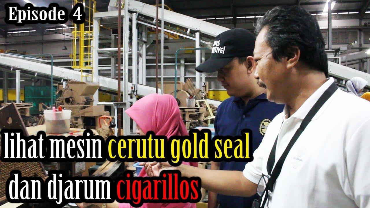 Proses Pembuatan Cerutu Gold Seal Dan Kretek Cigarillos Youtube