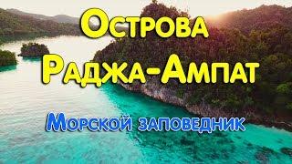 Острова Раджа-Ампат. Морской заповедник...