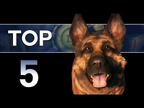 Fallout 4 - Top 5 Dogmeat Facts! (Companion Lore)