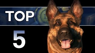 Fallout 4 - Top 5 Dogmeat Facts Companion Lore