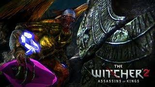 The Witcher 2 : Assassins of Kings - #14 : Pediram um picadinho de Galinha?