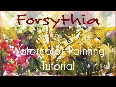 Watercolor Painting Tutorial Forsythia